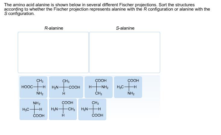 stereochemistry of amino acids pdf