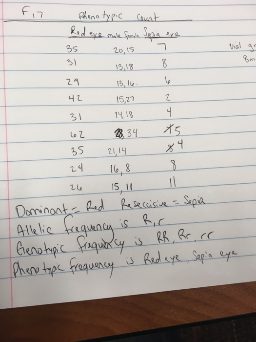 Hardy weinberg homework