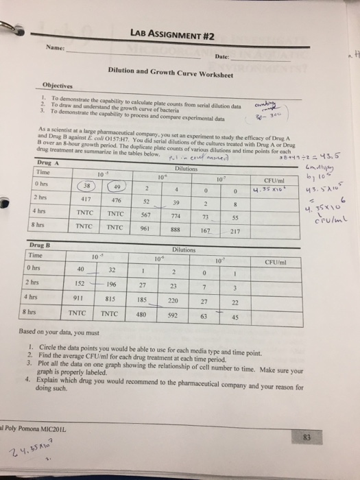 To Demonstrate The Capability To Calculate Plate C – Dilutions Worksheet