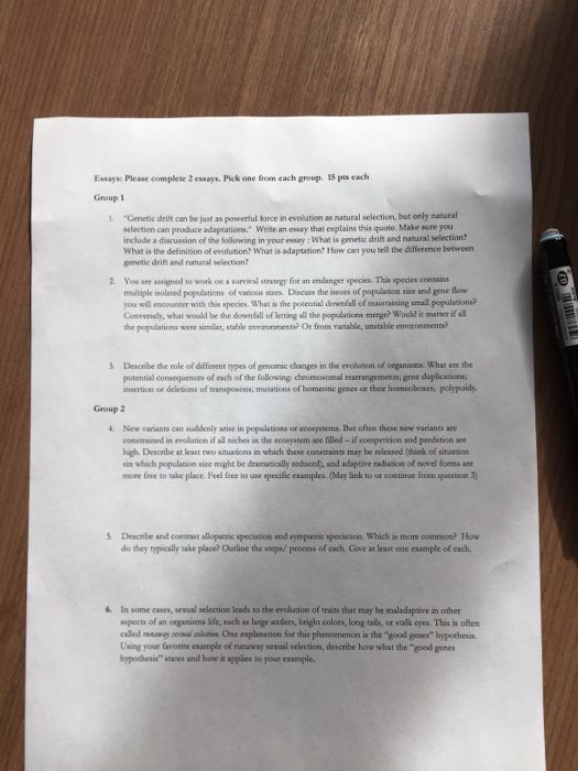 higher biology natural selection essay A bbc bitesize secondary school revision resource for higher biology about  natural selection and speciation: exam skills.