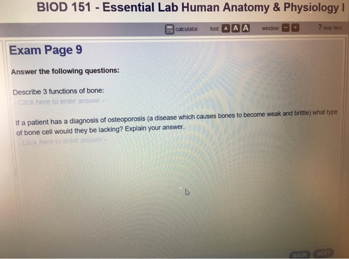 Solved Biod 151 Essential Lab Human Anatomy Physiology