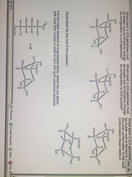 Solved: Which Bond In PD-galactose Map Be Broken And Re-fo ... H2coh