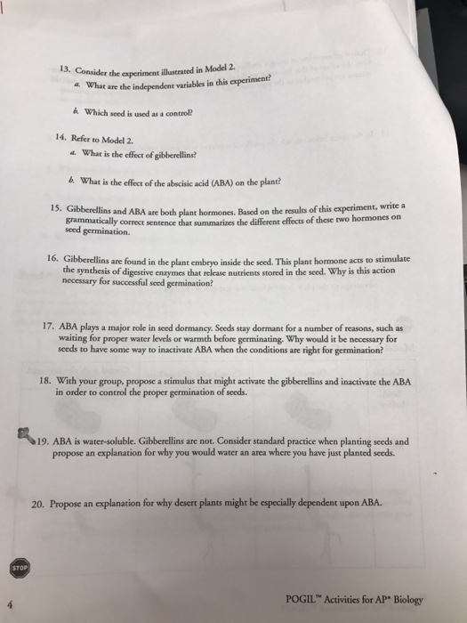 Biological classification worksheet answers
