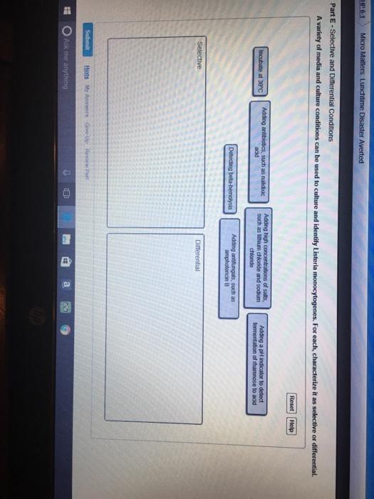 Can u do my homework