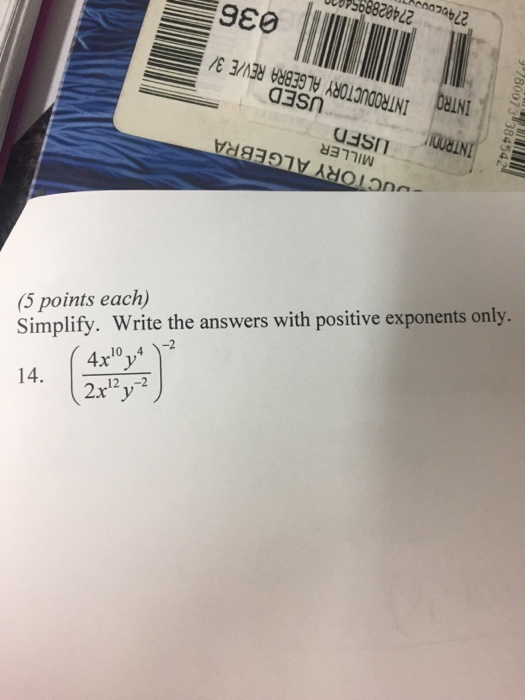 Elvis homework xm help online