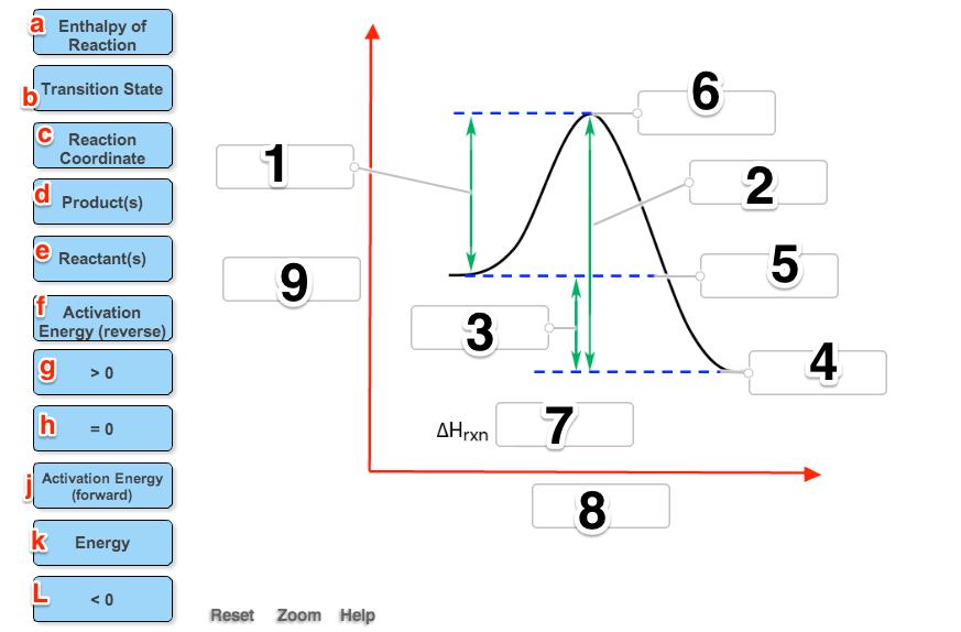 label the following reaction coordinate diagram. Black Bedroom Furniture Sets. Home Design Ideas
