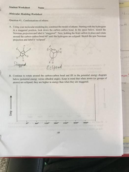 Solved Student Worksheet Molecular Modeling Worksheer Que