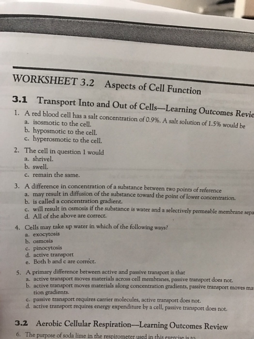 WORKSHEET 32 Aspects Of Cell Function 31 Transpo – Cell Function Worksheet