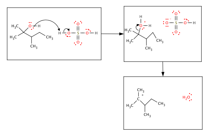 dehydration of 3 3 dimethyl 2 The double bond is between c-2 and c-3, and so it is named  sample  solution (a) dehydration of 2,3-dimethyl-2-butanol can lead to either 2.