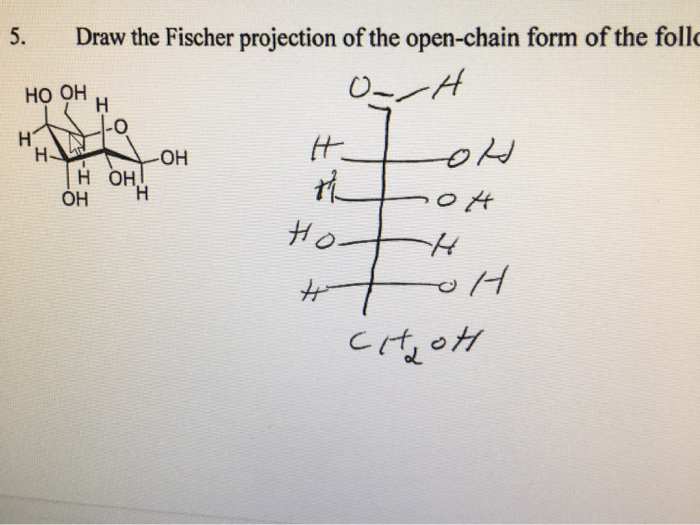 how to draw fischer projections