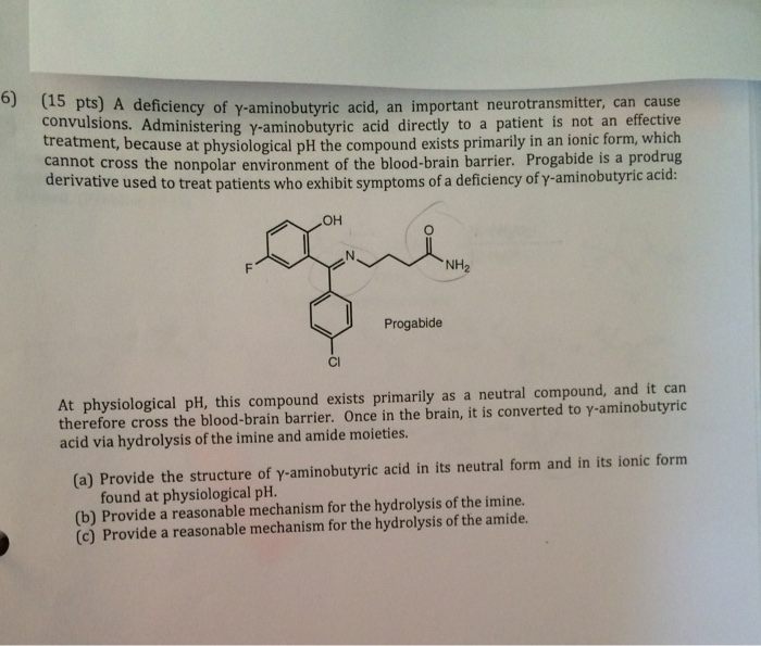the study of the importance of gamma aminobutyric acid A biochemist's experience with gaba  abstract this paper examines the clinical applications of gamma-aminobutyric acid  to be of key importance.