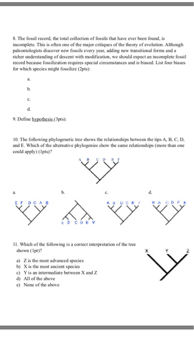 Solved: Introduction To Evolution Worksheet 1 Name & ID Pr ...