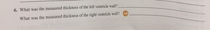 Solved: What Was The Measured Thickness Of The Left Ventri ...