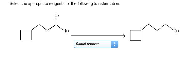 homework tutoring help