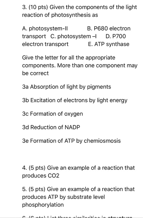 Solved 3 10 pts given the components of the light reac 10 pts given the components of the light reaction of photosynthesis as altavistaventures Gallery