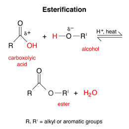 Draw The Ester That Is Formed From The Reaction
