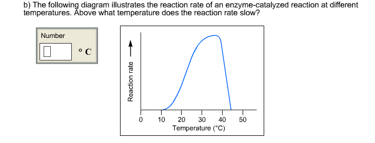 what is the relationship between ph and healthy enzyme activity