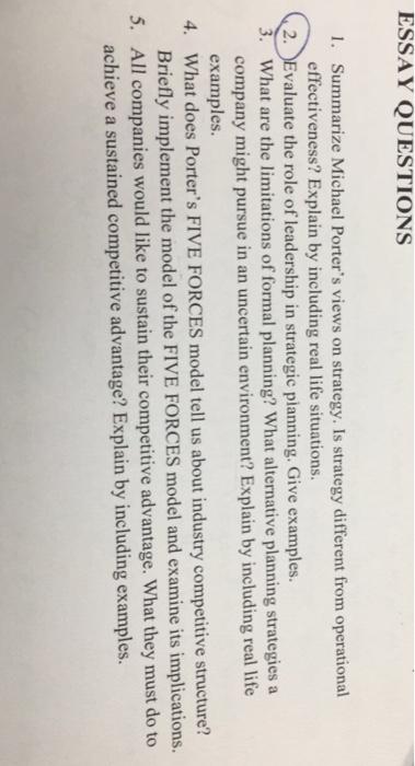 Describe Porter's Five Forces Model Essay Sample