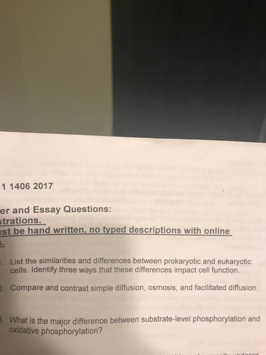 Dna deoxyribonucleic acid essay