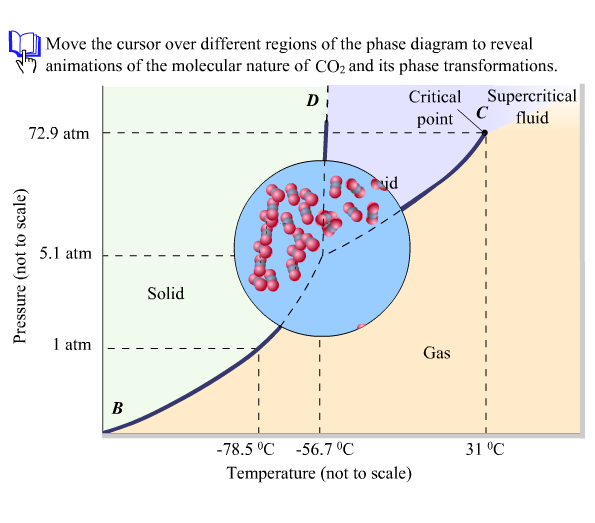 Open The Phase Diagram For Co2 Given In The Introduction