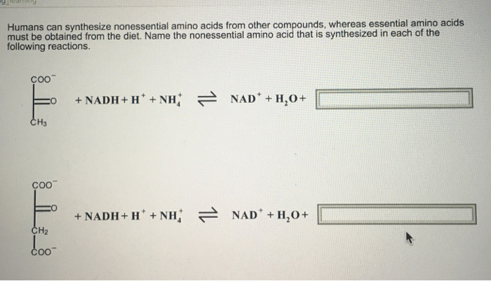 Can synthesise
