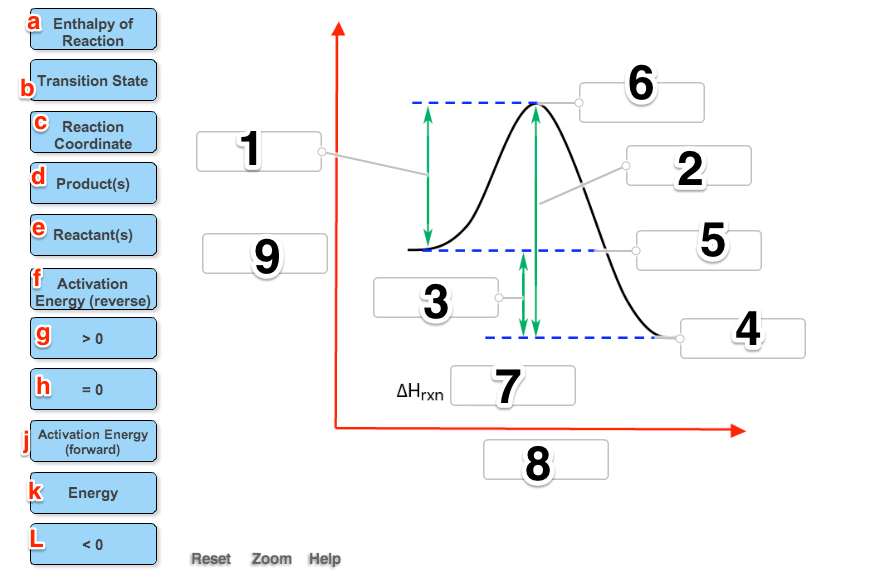 Label The Following Reaction Coordinate Diagram