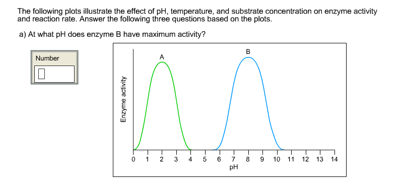 ph consequence with enzyme activity
