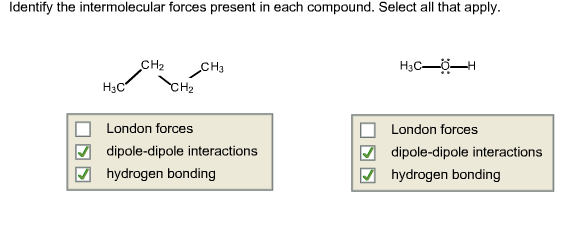 intermolecular forces questions and answers pdf