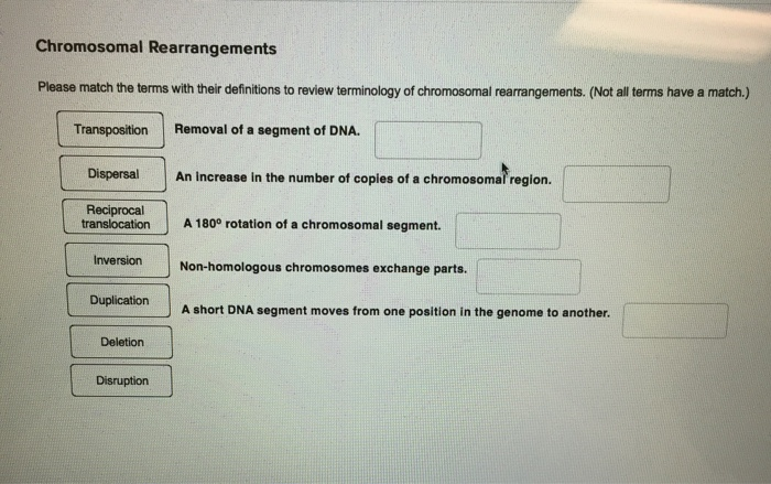 Chromosomal rearrangements in cancer