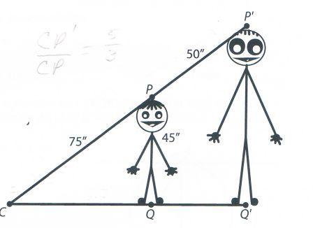 Scale factor homework help