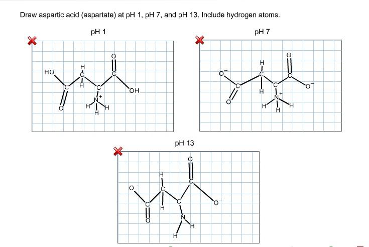 Show transcribe... L Arginine Structure