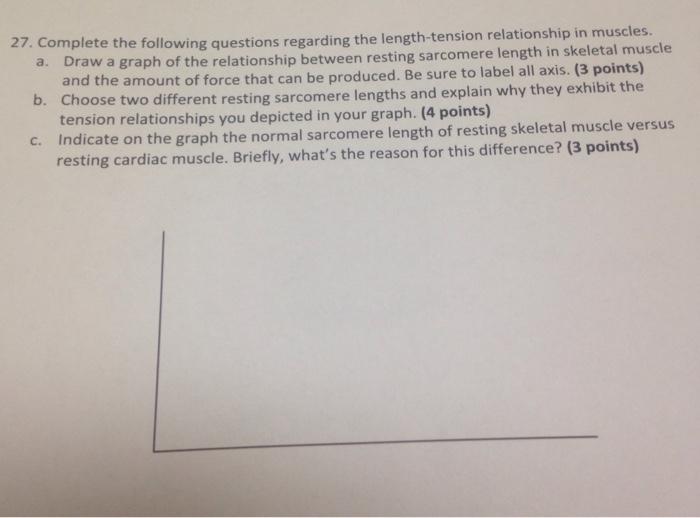 length tension relationship diaphragm definition