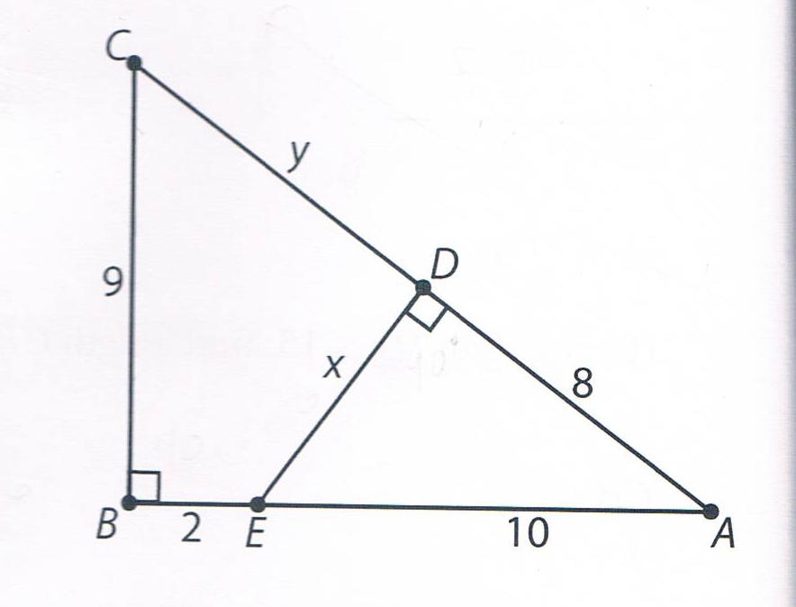 Triangle homework help