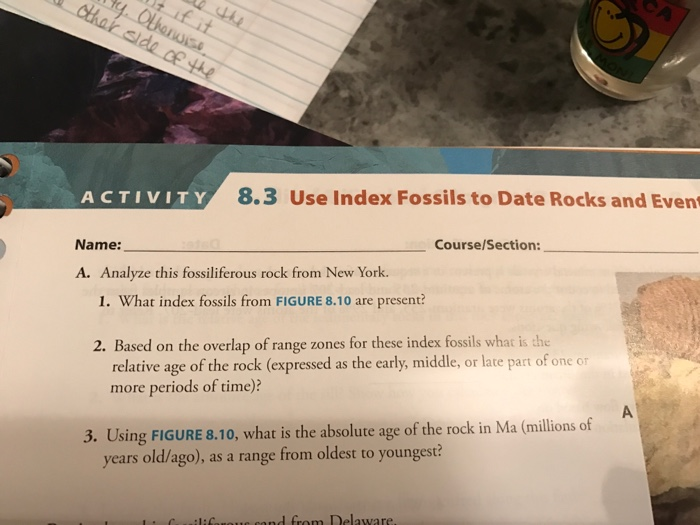 solved activity 8 3 use index fossils to date rocks and e. Black Bedroom Furniture Sets. Home Design Ideas