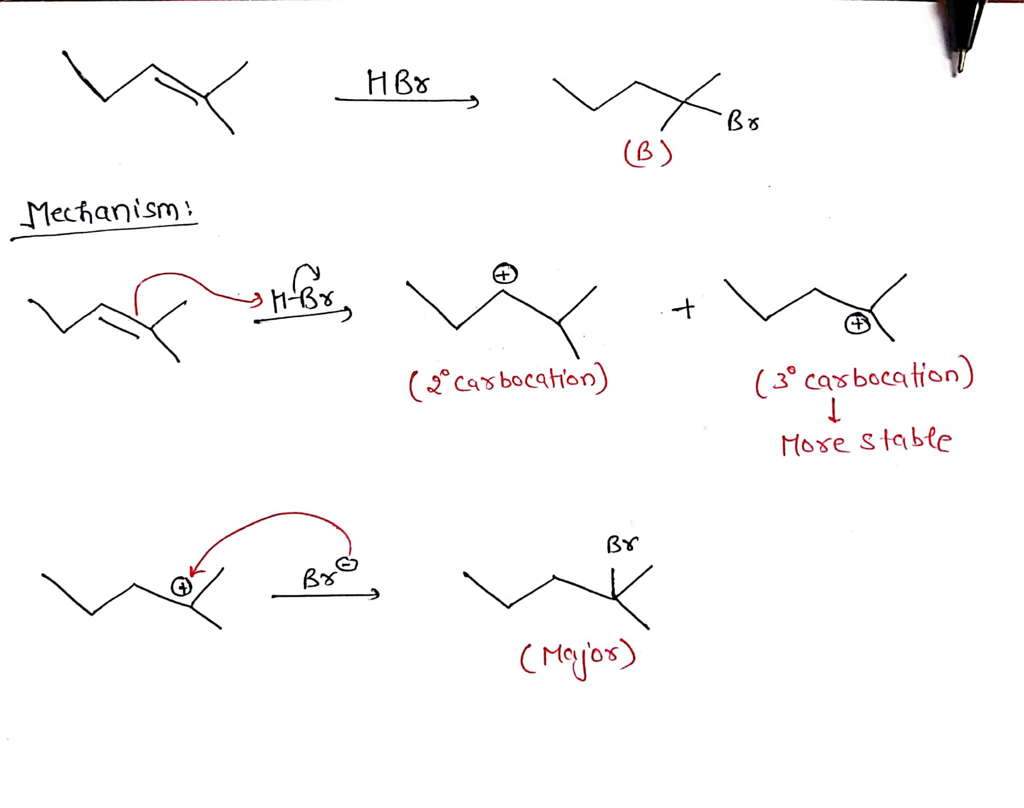 HBO XBO (B) Mechanism: H-Br (3 carsbocation) (3° carbocation) More stable Вх Byc wo (Major)
