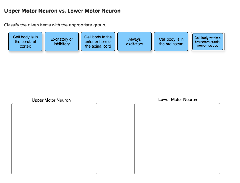 Question: Upper Motor Neuron vs. Lower Motor Neuron Classify the given items with the appropriate group. Ce.