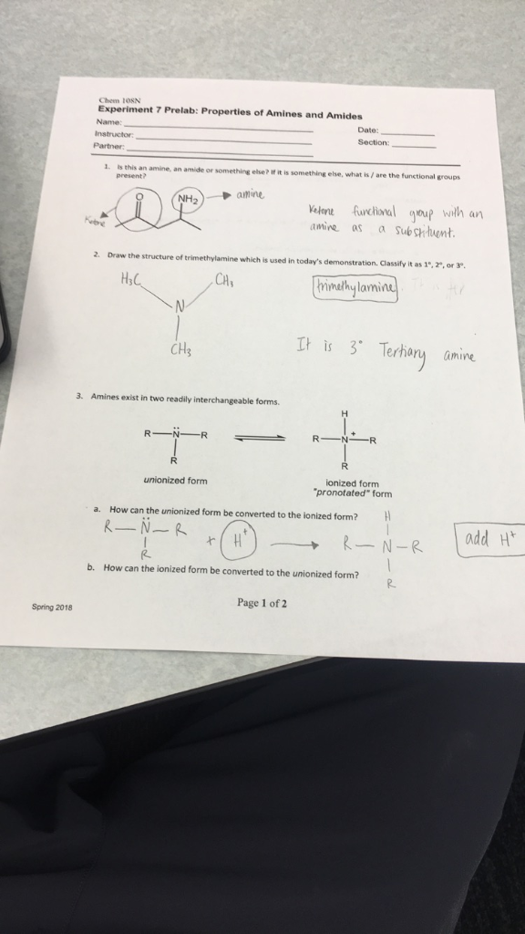 Solved: Chem 1OSN Experiment 7 Prelab: Properties Of Amine