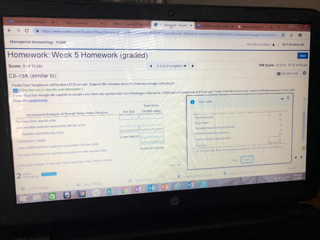welfare essay