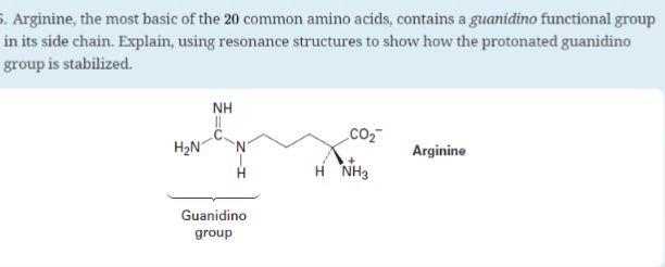 Solved arginine the most basic of the 20 common amino arginine the most basic of the 20 common amino acids contains a guanidino thecheapjerseys Gallery