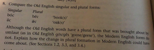 8  Compare The Old English Singular And Plural For