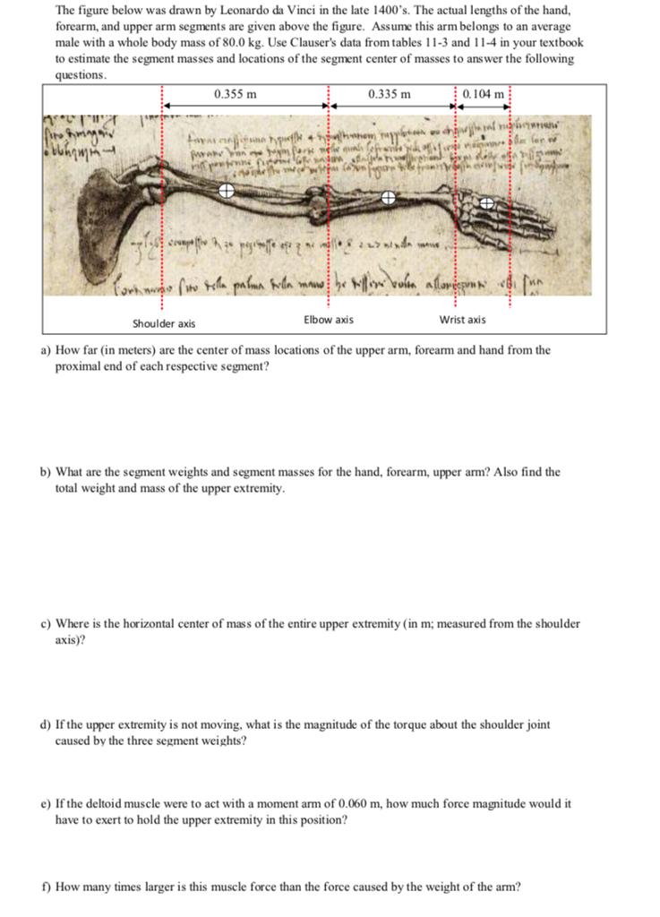 The Figure Below Was Drawn By Leonardo Da Vinci In Cheggcom
