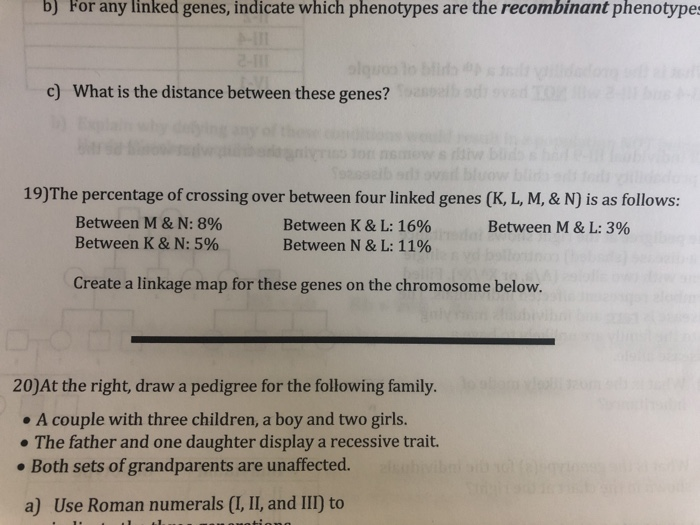 Solved: B) For Any Linked Genes, Indicate Which Phenotypes ... on