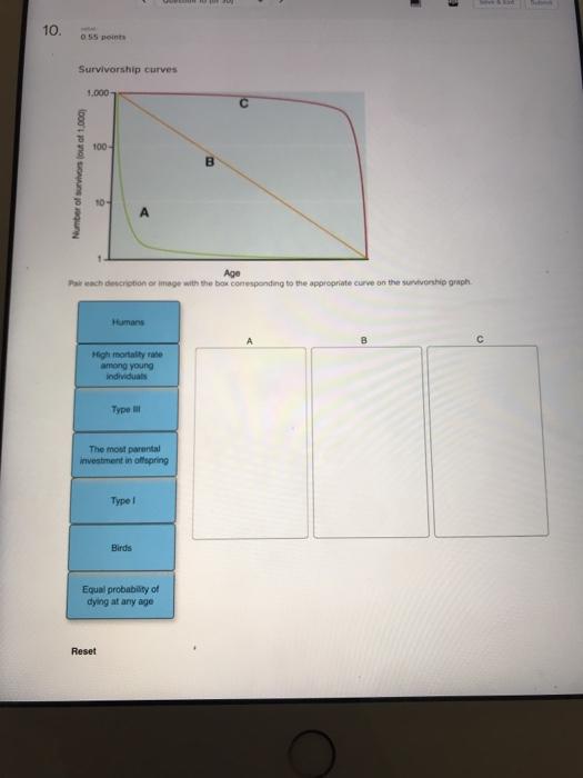 Solved 10 055 points survivorship curves 1000 1 100 3 055 points survivorship curves 1000 1 100 3 10 age pair each description or ccuart Image collections