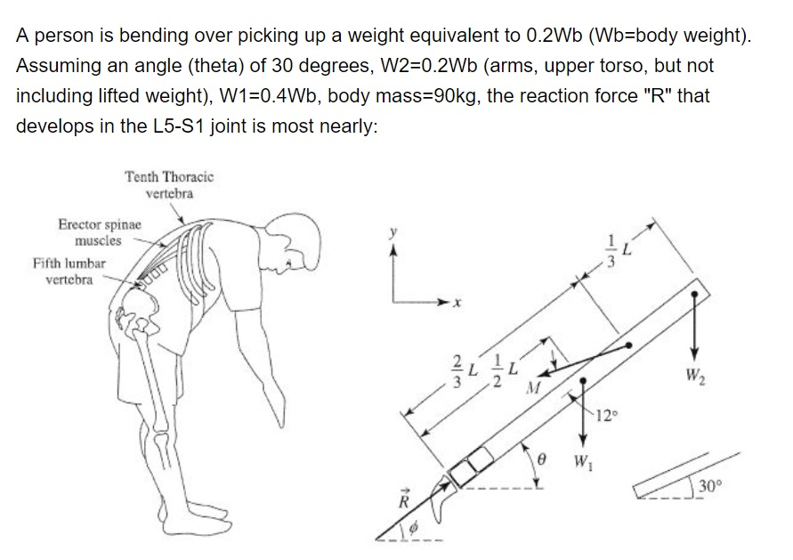 Solved A Person Is Bending Over Picking Up A Weight Equiv