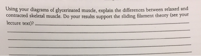 glycerinated muscle