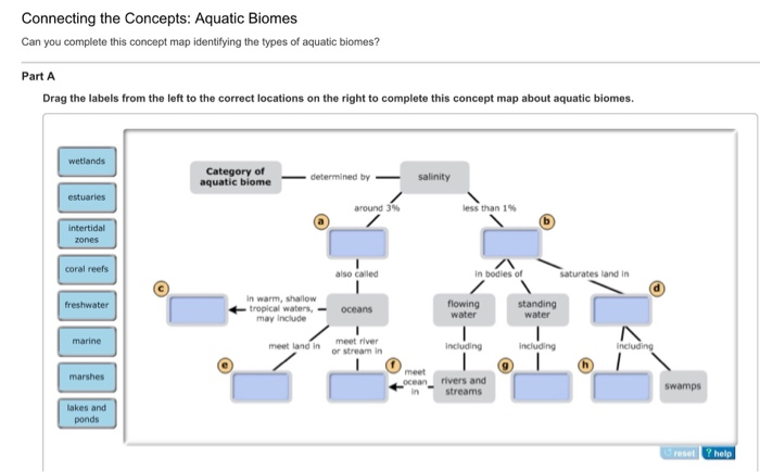 Connecting The Concepts: Aquatic Biomes Can You Complete This Concept Map  Identifying The Types Of