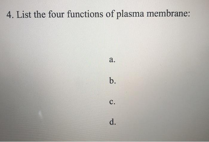 4 functions of plasma membrane