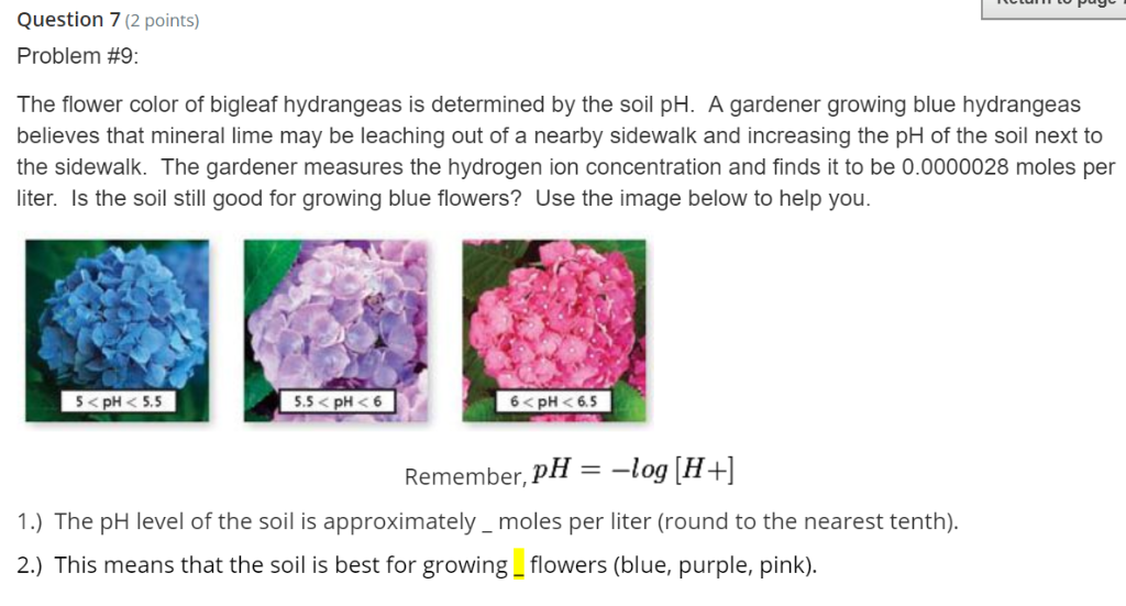 Solved Question 7 2 Points Problem 9 The Flower Color