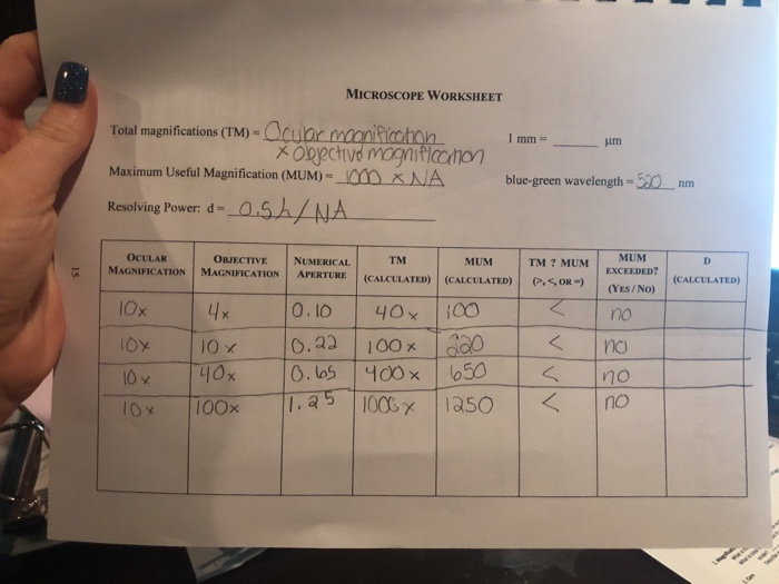 Solved Microscope Worksheet Total Magnifications Tm M