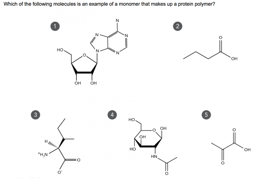 Which Of The Following Molecules Is An Example Of Chegg